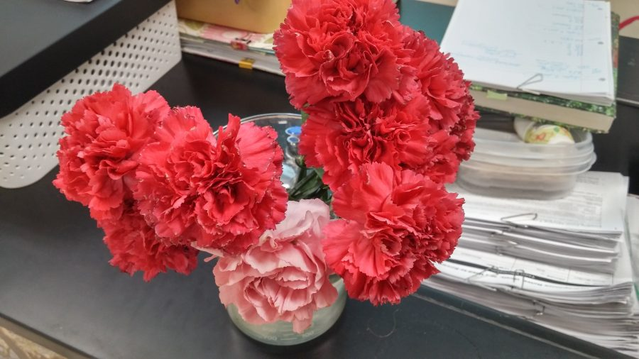 Carnation+Sale