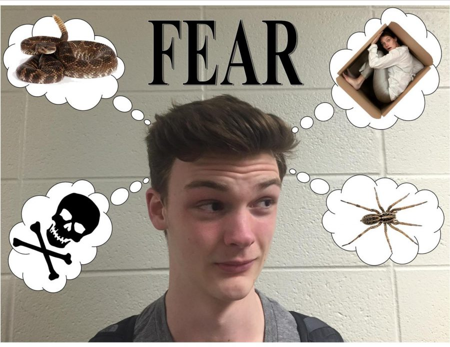 What+Do+You+Fear%3F