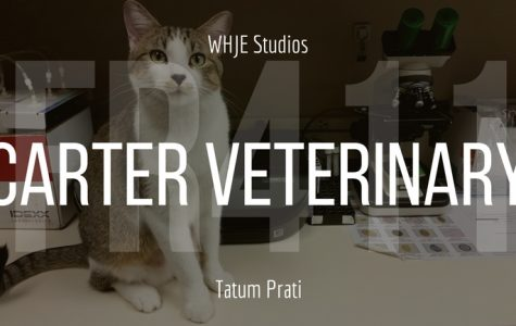 Carter Veterinary - FR411 #15