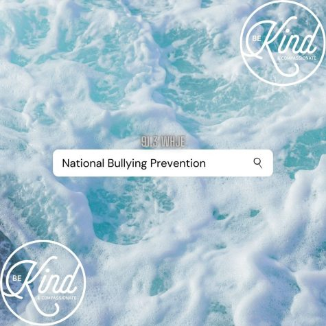 Blog Post #16- October Awareness Month