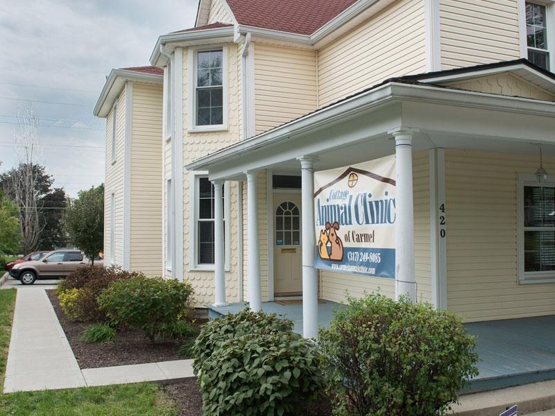 Cottage+Animal+Clinic+-+Success+%231