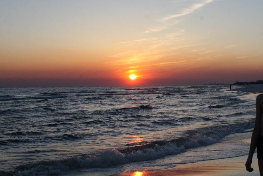 Acidic Oceans –  Environmental #1