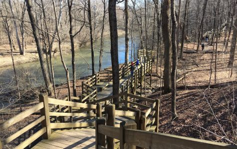Illegal Trails – Environmental #4