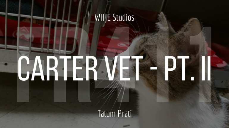 Carter Vet - Part II - FR411 #16