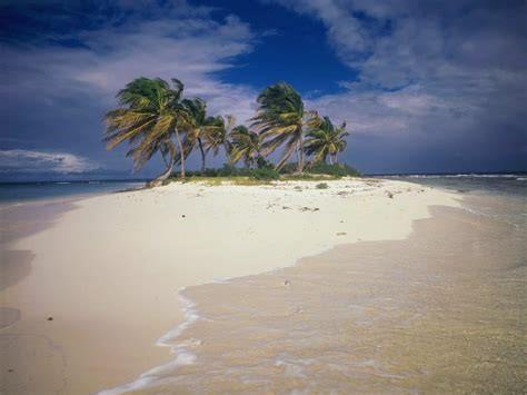 Desert Island Discs- Mr. Ellery